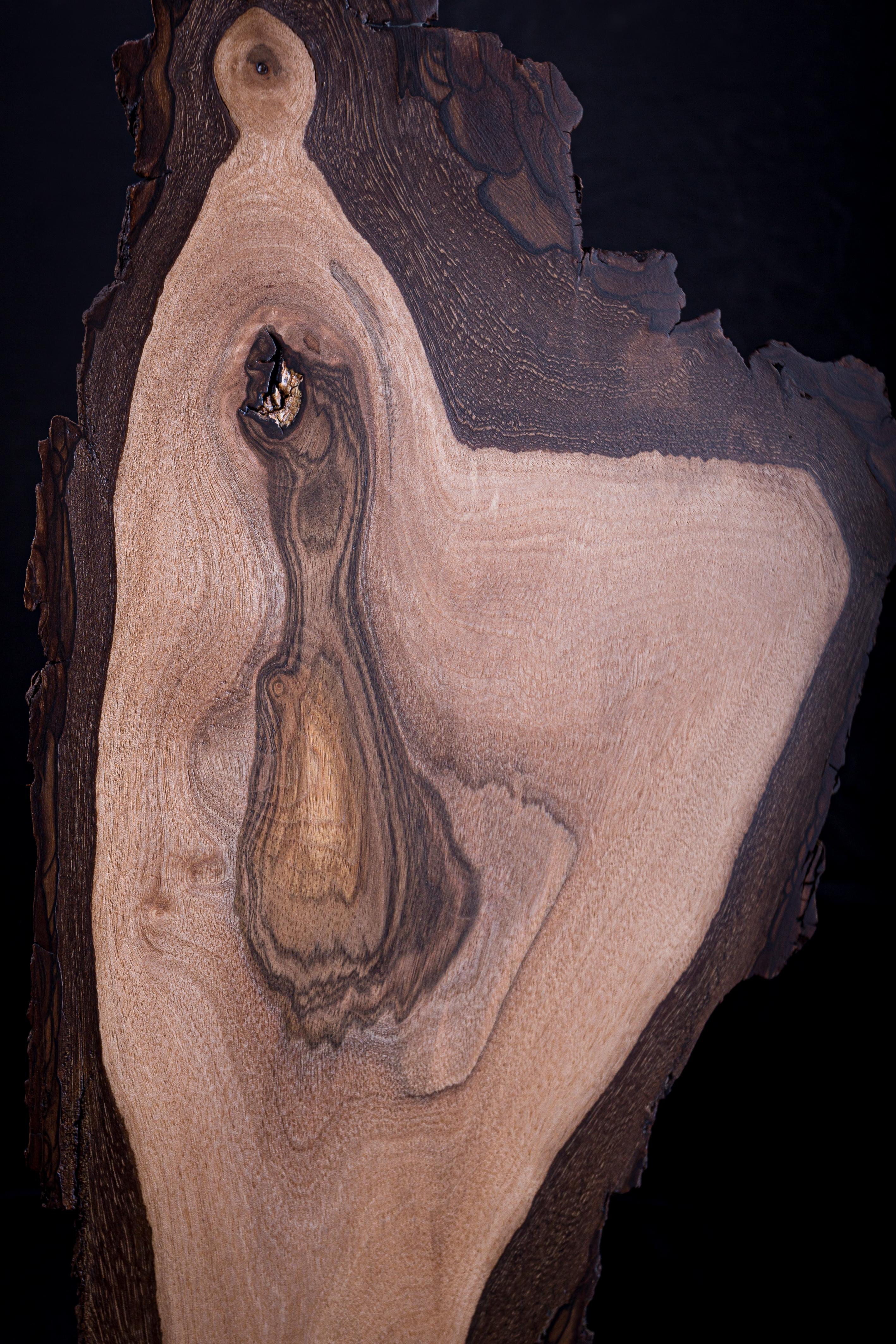 Sculpture Corsica
